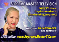 Supreme Master Television